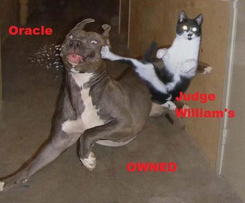cat-owned.jpg