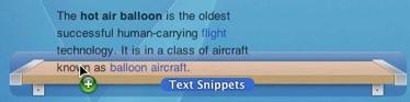 textsnippet
